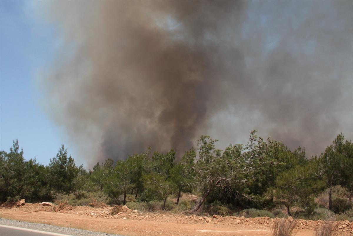 GÜNCELLEME – KKTC'de orman yangını