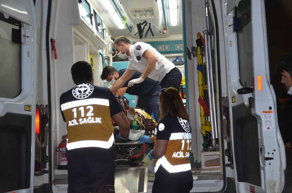Hakkari'de ayının saldırısına uğrayan kişi yaralandı