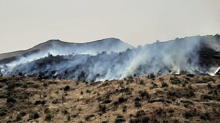 Muğla'da makilik alanda yangın çıktı
