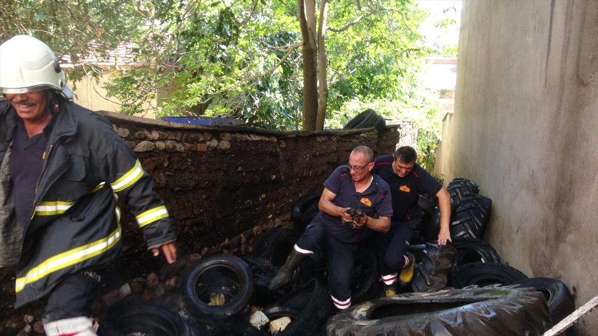 Afyonkarahisar'da çıkan yangında mahsur kalan kedi yavrularını itfaiye kurtardı
