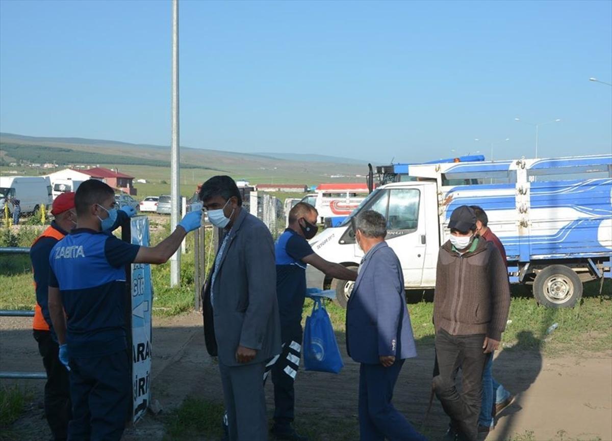 Ardahan'da canlı hayvan pazarı yeniden açıldı