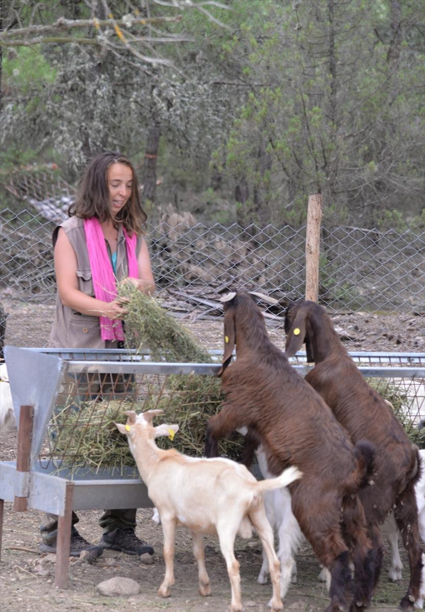 """Köyde keçi güden """"Nişantaşı kızı"""" sürüsünü de işini de büyüttü"""