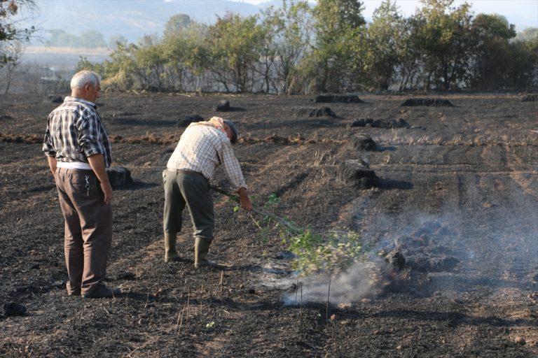Manisa'da çıkan anız yangını kontrol altına alındı