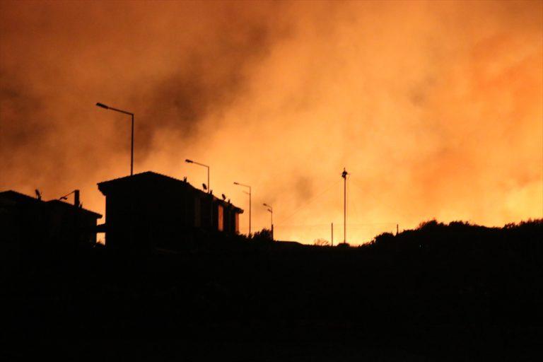 Tarım ve Orman Bakanı Pakdemirli'den Çeşme'deki yangına ilişkin açıklama: