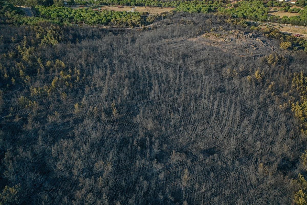 GÜNCELLEME 4 – Balıkesir'deki orman yangını kontrol altına alındı