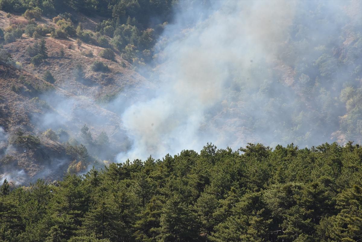 Soğuksu Milli Parkı'nda 30 dönüm ormanlık alan yandı