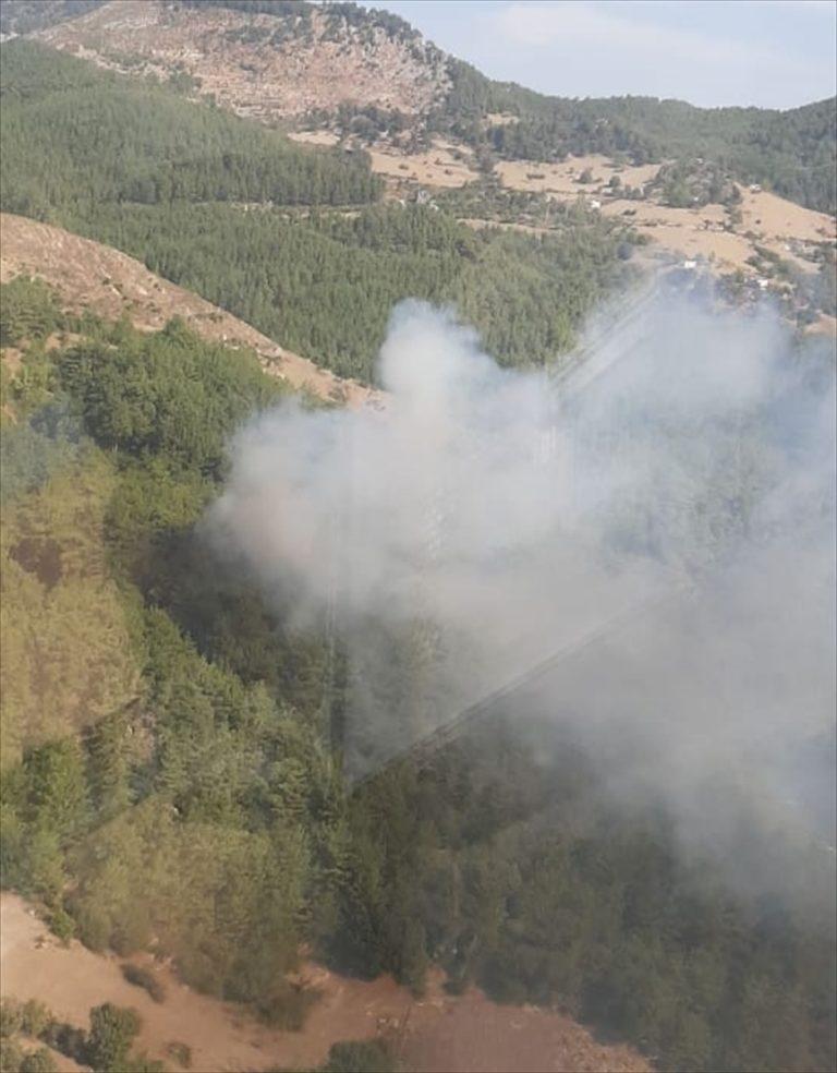 GÜNCELLEME – Adana'da çıkan orman yangını kontrol altına alındı