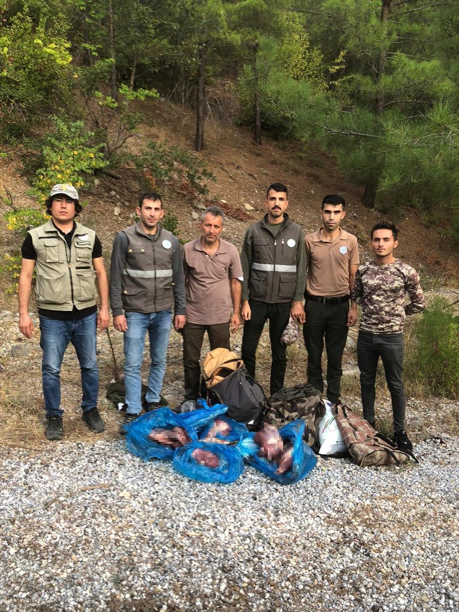 Antalya'da yaban keçilerini avlayan kişiye 55 bin 554 lira ceza
