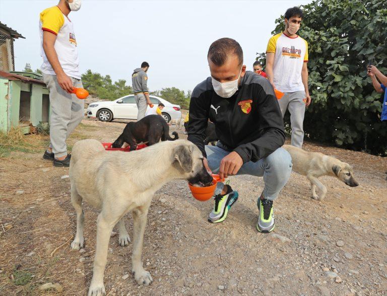 Göztepeli sporcular Menderes'teki hayvan barınağını ziyaret etti
