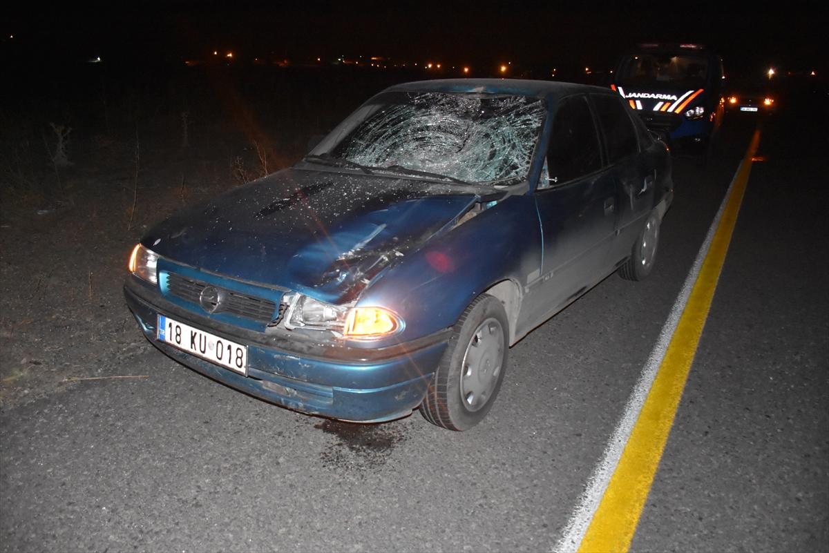 Kars'ta aniden yola çıkan at kazaya neden oldu: 1 yaralı