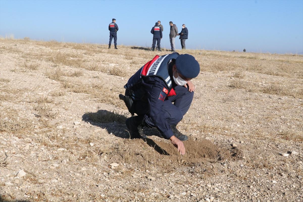 """Yozgat'ta jandarma arazide avcılarca vurulduğu iddia edilen """"yakalı toy"""" kuşunu aradı"""