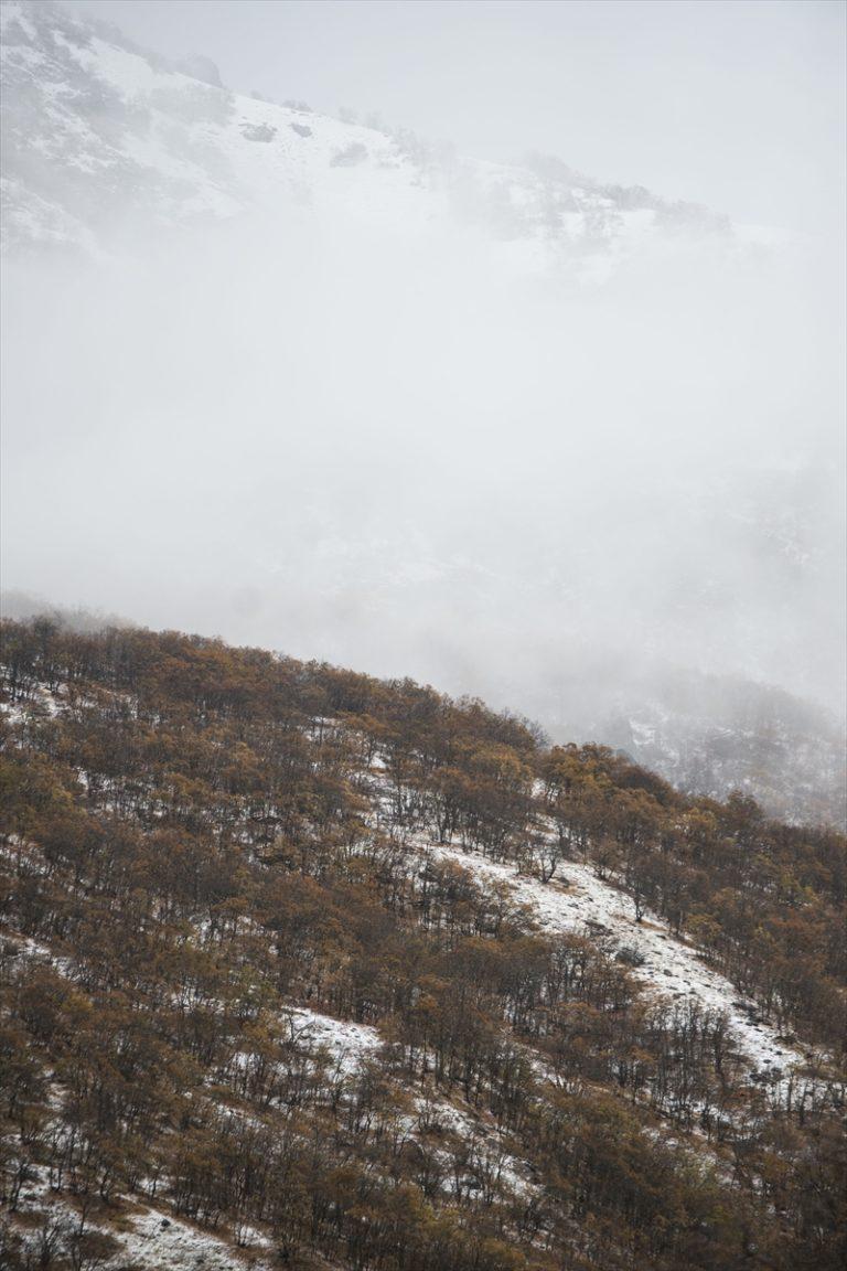 Munzur Vadisi Milli Parkı'nda oluşan sis kartpostallık manzaralar oluşturdu