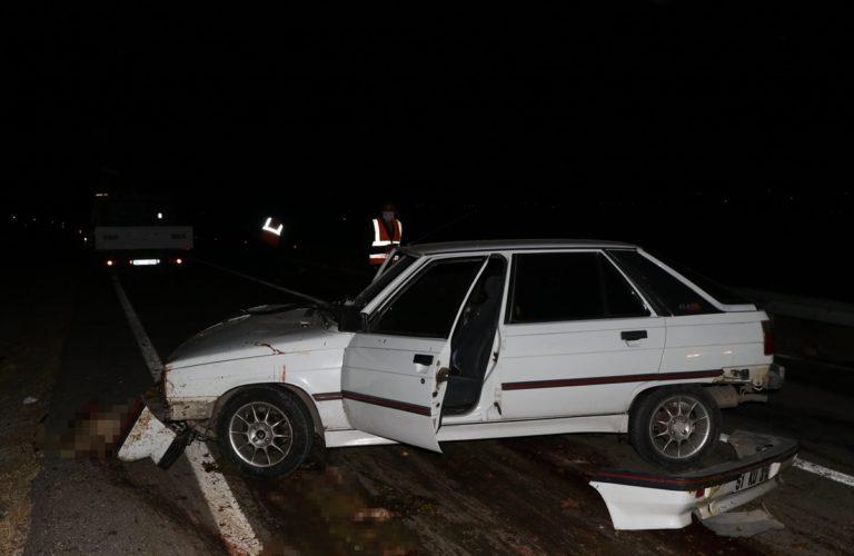 Niğde'de otomobil koyun sürüsüne çarptı: 2 yaralı